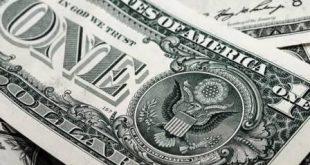 2019 Dolar Kuru